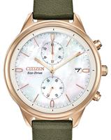 Citizen Watches FB2008-01D